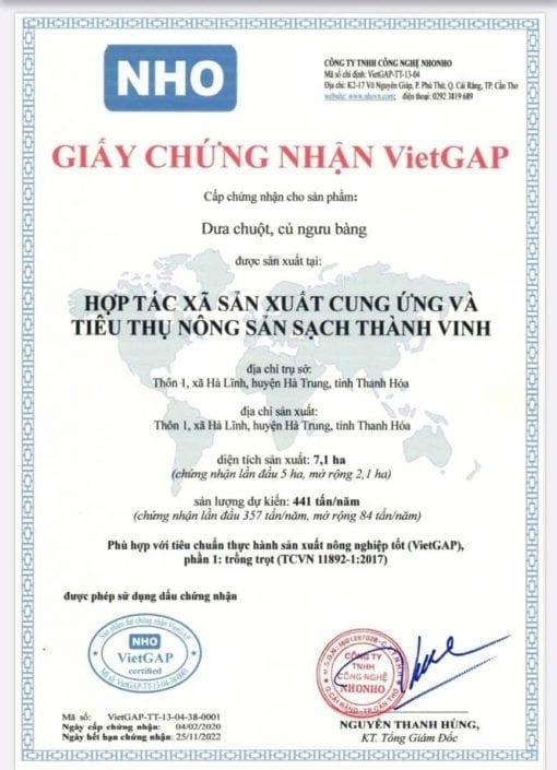 Vietgap-hop tac xa THANH VINH