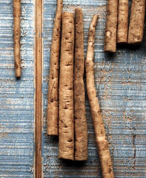re-nguu-bang-burdock-root